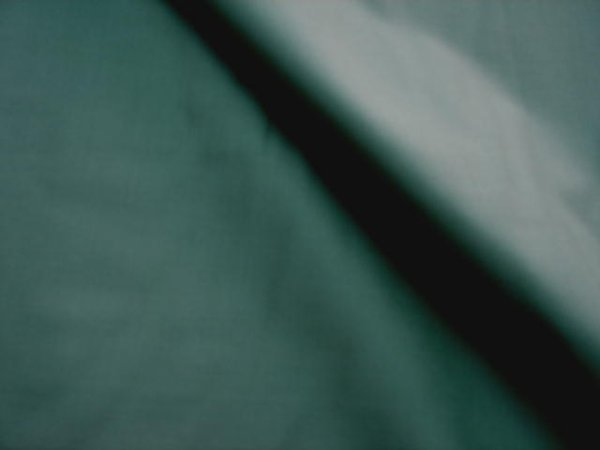 画像1: エイティスクエア・ヴィリジアン (1)